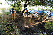 It's day two of my earthworks workshop and time for those water harvesting basins to take shape. Here, WMG staffer Charlie Alcorn confers with volunteer Sam while Daniel works in the background.