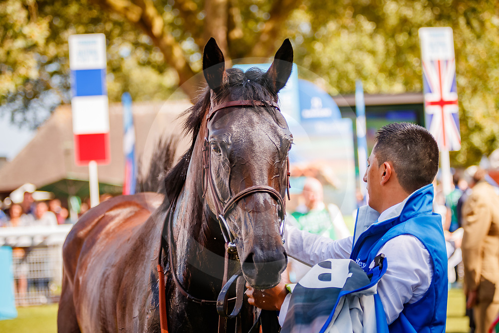 Nonza (A. Badel) wins Darley Prix Jean Romanet Gr. 1 in Deauville, France  19/08/2018, photo: Zuzanna Lupa