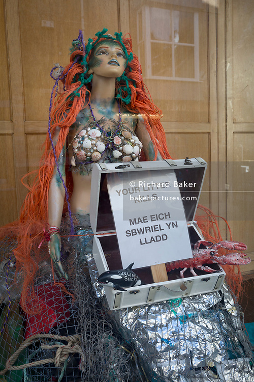 A mermaid in the window of a seaside business warns in both the English and Welsh languages, of the dangers of litter on 13th September 2018, in Barmouth, Gwynedd, Wales.