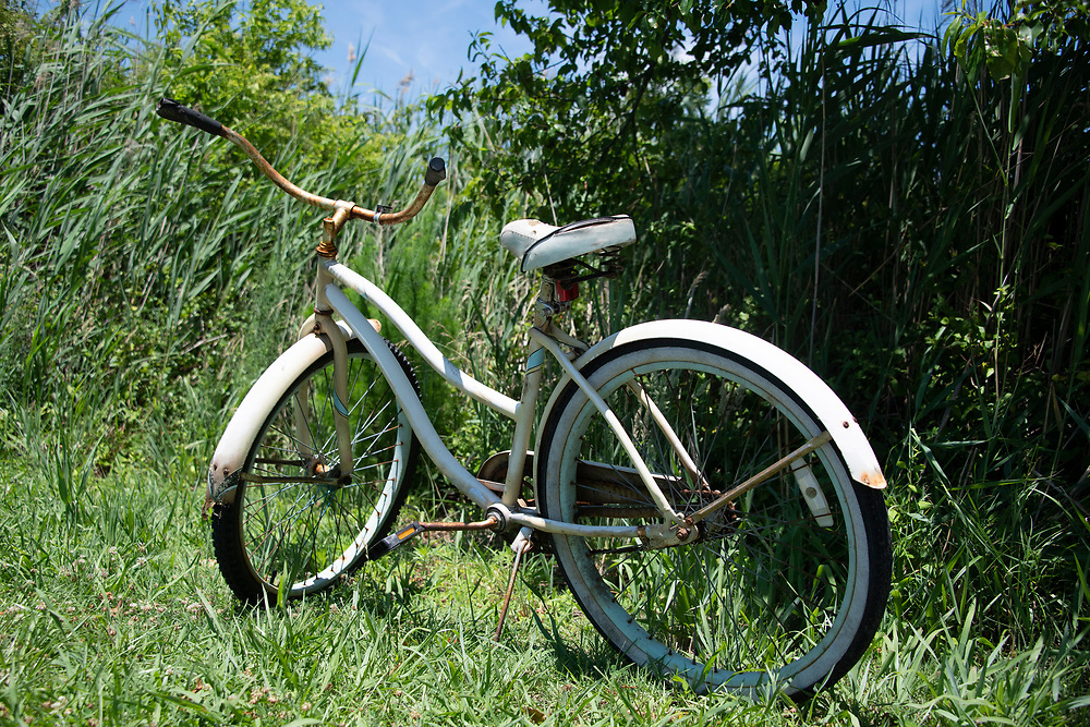 Rusty bicycle parked in grass