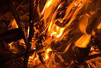 Campfire flames in Big Sur, California.
