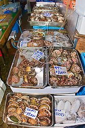 fresh abalones, snails, and clams for sale at wholesale shop, Tsukiji Fish Market or Tokyo Metropolitan Central Wholesale Market, the world's largest fish market, hadling over 2,500 tons and over 400 different kind of fresh sea food per day