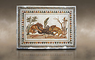 Picture of a Roman mosaics design depicting Lions eating a boar, from the ancient Roman city of Thysdrus. 2nd century AD, House of the Dionysus Proccession. El Djem Archaeological Museum, El Djem, Tunisia. Against an art background .<br /> <br /> If you prefer to buy from our ALAMY PHOTO LIBRARY Collection visit : https://www.alamy.com/portfolio/paul-williams-funkystock/roman-mosaic.html . Type - El Djem - into the LOWER SEARCH WITHIN GALLERY box. Refine search by adding background colour, place, museum etc<br /> <br /> Visit our ROMAN MOSAIC PHOTO COLLECTIONS for more photos to download as wall art prints https://funkystock.photoshelter.com/gallery-collection/Roman-Mosaics-Art-Pictures-Images/C0000LcfNel7FpLI