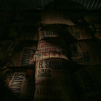 Sacks of coffee from Siglo XXI stored in the warehouse ready for export. Siglo XXI a certified fairtrade producer based in El Salvador.
