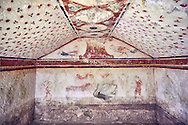 """Underground Etruscan tomb Known as """"Tomba dei Fiorellini"""" A single chamber with double sloping ceiling decorated with red circles and three petalled flowers. In the tympanium on the back wall is a painted pillar and two cockerals, a couple are depicted banquetting bellow. 475-450 BC. Excavated 1960 , Etruscan Necropolis of Monterozzi, Monte del Calvario, Tarquinia, Italy. A UNESCO World Heritage Site. .<br /> <br /> Visit our ETRUSCAN PHOTO COLLECTIONS for more photos to buy as buy as wall art prints https://funkystock.photoshelter.com/gallery-collection/Pictures-Images-of-Etruscan-Historic-Sites-Art-Artefacts-Antiquities/C0000GgxRXWVMLyc"""