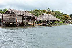Warao-Indian houses at riverside, Orinoco Delta, Venezuela