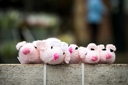© Licensed to London News Pictures. 27/04/2016. Thirsk UK. Picture shows  knitted mice on a bench in Thirsk that has been Yarn Bombed. Under the cover of Darkness 300 Yarn bombing street artist's have covered the Town centre of Thirsk, the group has covered bollards, flower pots, the bus stop, tree's, benches, even the local police station. The knitted creations took over 750 balls of wool & have been placed along the route of the Tour De Yorkshire which will pass through the town during it's final stage from Middlesborough to Scarborough on Sunday.  Photo credit: Andrew McCaren/LNP