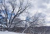 KW Area - Winter