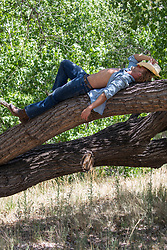 cowboy relaxing on a tree branch
