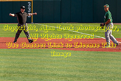 NORMAL, IL - April 08: Umpire Rick Allen calls a runner at first base safe after a late throw to Mar Vincelli-Simard during a college baseball game between the ISU Redbirds  and the Sacramento State Hornets on April 08 2019 at Duffy Bass Field in Normal, IL. (Photo by Alan Look)