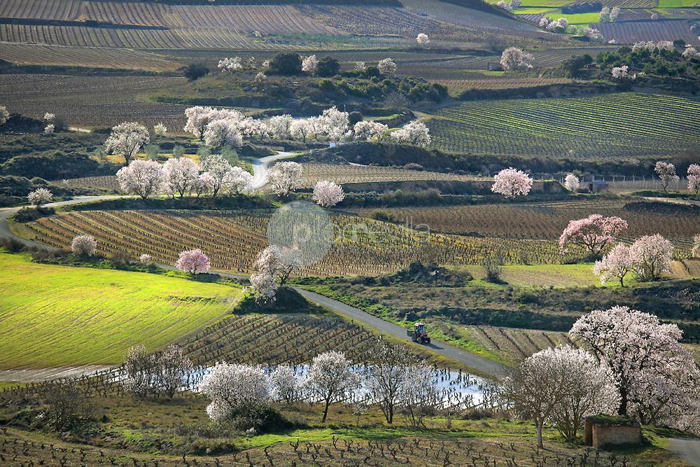 San Asensio. La Rioja ©Daniel Acevedo / PILAR REVILLA