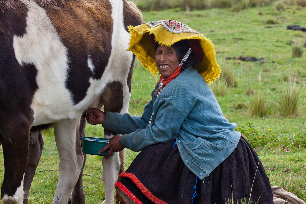 Woman milking cow near the Andean community of Upis along the Interoceanic Highway (3,800 m in elevation) about three hours from Cusco. People from the villages, like this girl, are generally happy about the new highway because they are able to reach Cusco and other cities in significantly less time. An artisan project in Upis is supported by Interoceanica SUR (iSUR), an organization that seeks to promote conservation efforts around the new Interoceanic Highway that streteches across Peru and Brazil.
