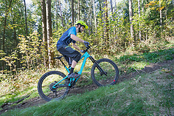 Mountain biker riding uphill on forest track, Bavaria, Germany