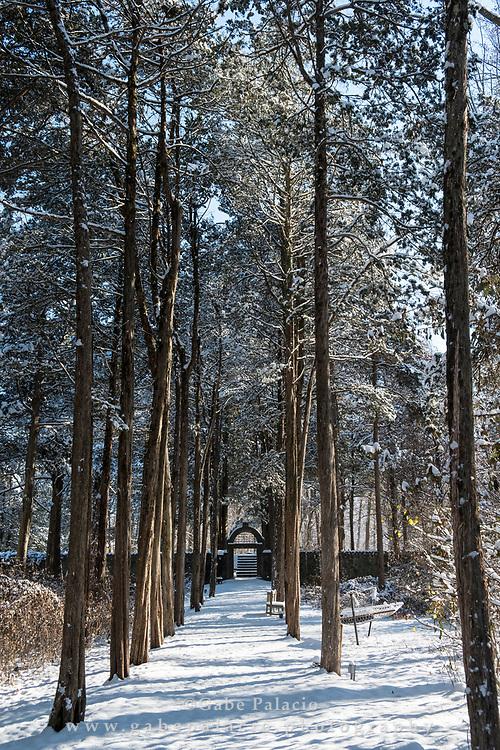 Morning after a snowfall at Caramoor in Katonah New York on December 10, 2017. <br /> (photo by Gabe Palacio)
