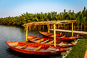 March, 2019, Hoi An: Boats undercover next to palm and bamboo trees at a cooking school.