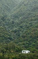 El Yunque, Mountain Home, Puerto Rico