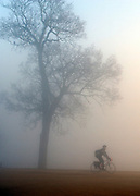 © Licensed to London News Pictures. 15/03/2012. Richmond, UK. A cyclist peddles throughout the murky conditions. Foggy conditions at Richmond Park this morning, 15 march 2012. The weather is expected to be good across large parts of the UK for the day.  Photo credit : Stephen SImpson/LNP