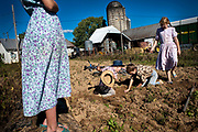 Boys will be boys as Jesse and Glen play in the dirt as their sisters look on. Old Order Mennonites are a branch of the Mennonite church. It is a term that is often used to refer to those groups of Mennonites who practice a lifestyle without some elements of modern technology.