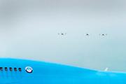Nederland, the Netherlands, Lelystad, 15-06-2018 Het regionale vliegveld Lelystad Airport wordt uitgebreid om de drukte van de vakantievluchten vanaf Schiphol te verminderen. Ondernemers en bedrijven bouwen aan nieuwe vestigingen en magazijnen om van hieruit te kunnen opereren . Veel bewoners van de provincies Gelderland en Overijssel vrezen voor geluidsoverlast door de aangekondigde lage aanvlieghoogte van de vliegtuigen . Drie kleine lesvliegtuigen stijgen op tegen de achtergrond van een oude boeing 747 van de klm van het aviodrome, het luchtvaartmuseum .Foto: Flip Franssen