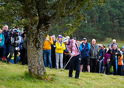 Auchterarder, Scotland, UK. 14 September 2019. Saturday morning Foresomes matches  at 2019 Solheim Cup on Centenary Course at Gleneagles. Pictured; Carlota Ciganda of team Europe  plays approach shot on hole 3 from rough beside tree. Iain Masterton/Alamy Live News
