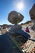 Valley Arareko, the mushrooms, Creel, Copper Canyon, Chihuaua, Mexico