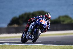 October 25, 2018 - Phillip Island, Australie - MAVERICK VINALES - SPANISH - MOVISTAR YAMAHA MotoGP - YAMAHA (Credit Image: © Panoramic via ZUMA Press)