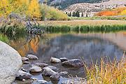Fall Foliage at North Lake in Bishop California