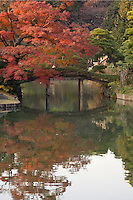 Rikugien Bridge, Autumn Colors - the name of this garden means the six traditional elements essential to great poetry.  A wonderful, romantic sentiment in itself for a garden stroll but especially apt because the concept has been followed through to the design and layout of this garden which depicts 88 scenes from a classic Japanese poem.  It does so by use of the pond, stone islands, teahouses and bridges.