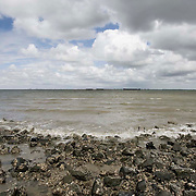 Nederland Terneuzen  19 juni 2010 20100619     ..  Serie landschappen provincie Zeeland. Zeeuws-Vlaanderen, golfslag op de oevers van de westerschelde. , wei, weide, weidegang, weiland, weiland. Landscape, westerschelde, westeschelde, wijdheid, wijds, wijdsheid, wind, wit, witte, wolk, wolken, wolkenpartij, zee, zeeland, zeespiegel, zeespiegelstijging, zeeuws vlaanderen, zeeuws-vlaanderen, zeewaterniveau, zeewering, zo vrij als een vogel, zware, zwitserleven gevoel ..Foto: David Rozing