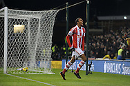 Steven Nzonzi of Stoke city celebrates after he scores his sides 2nd goal during the Barclays Premier league, Stoke city v Sunderland at the Britannia stadium in Stoke on Trent, England on Saturday 23rd Nov 2013. pic by Jeff Thomas, Andrew Orchard sports photography,