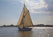 Historic wooden sailing yacht boat in full sail at the mouth of River Deben, looking over to Felixstowe Ferry, Suffolk, England
