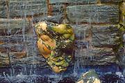 Sculpture, water fall, Chanticleer Gardens, Wayne, PA