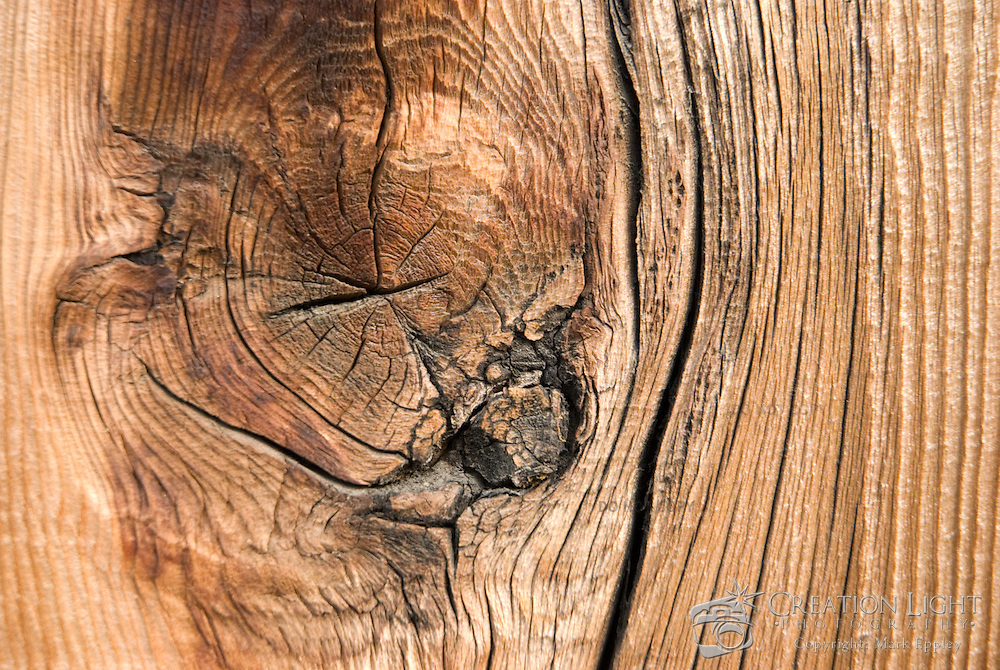 As wood ages, growth rings become more apparent and parts of the wood deepen in color giving it more character.