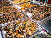 """27 NOVEMBER 2012 - BANGKOK, THAILAND:  Fried and grilled insects for sale in the food row at the Wat Saket Temple Fair in Bangkok. Wat Saket, popularly known as the Golden Mount or """"Phu Khao Thong,"""" is one of the most popular and oldest Buddhist temples in Bangkok. It dates to the Ayutthaya period (roughly 1350-1767 AD) and was renovated extensively when the Siamese fled Ayutthaya and established their new capitol in Bangkok. The temple holds an annual fair in November, the week of the full moon. It's one of the most popular temple fairs in Bangkok. The fair draws people from across Bangkok and spills out in the streets around the temple.   PHOTO BY JACK KURTZ"""