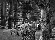 Eagles Group - Myanmar