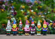 © Licensed to London News Pictures. 20/05/2013. London, UK A set of garden gnomes, The Chelsea Flower Show has lifted its bans on gnomes for the first time. Press day at Chelsea Flower Show 2013. The centenary edition of the show attracts large number of visitors and is already sold out before opening day. Photo credit : Stephen Simpson/LNP