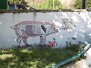 Vegan anti meat eaters graffiti Photographed in Thessaloniki, Greece
