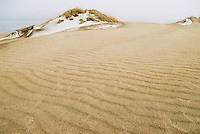 Snow on the sand dunes near Nida, Curonian Spit, Lithuania