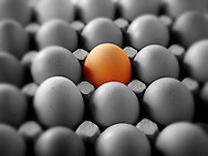 One coloured egg in a tray of black & white eggs