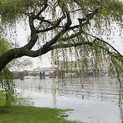 A flooded waterfront along Hains Point and the Washington Channel (with Southwest Waterfront in the background).
