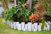 Florida garden with tropical plants.  Belleair Beach Tampa Bay Area Florida USA