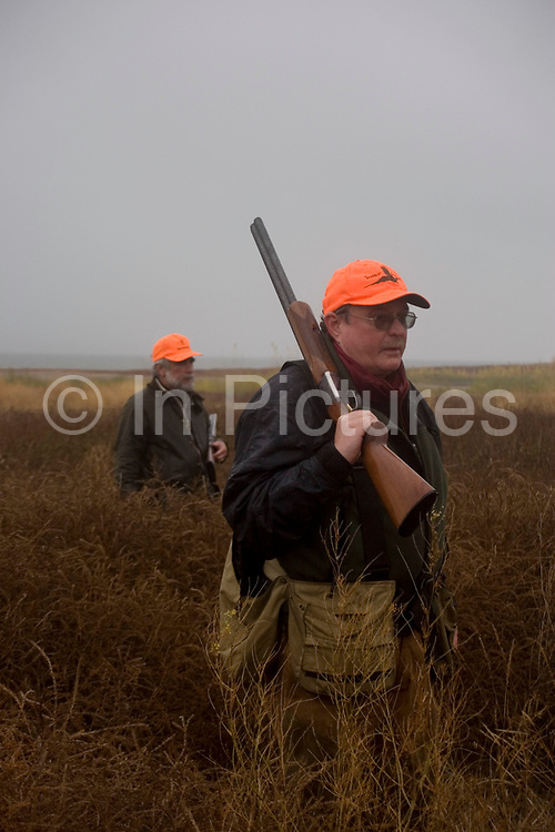 Experienced hunters Joel Baldwin (aka 'Mr Chicken') and John Davidson (left) out on the North Dakota prarie grasslands west of Minot, shooting upland game birds such as grouse (also known in this area as 'chickens'). Joel has been shooting for most of his life and puts considerable efforts into his hunting, efforts which reward him with wild game meats, none of which is wasted. This cold wet morning is not ideal for this type of shooting as the birds tend to sit tight in the undergrowth. The hunters on occasion nearly tread on the birds before they will take flight.