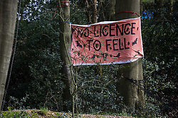 Wendover, UK. 9th April, 2021. A banner hung by environmental activists reading 'No Licence To Fell' is pictured during tree felling operations for the HS2 high-speed rail link in Jones Hill Wood, ancient woodland said to have inspired Roald Dahl. Tree felling work began this week, in spite of the presence of resting places and/or breeding sites for pipistrelle, barbastelle, noctule, brown long-eared and natterer's bats, following the issuing of a bat licence to HS2's contractors by Natural England on 30th March.
