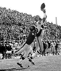 Raiders Fred Biletnikoff grabs pass against Denver Bronco #41..(1972 photo/Ron Riesterer)
