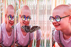 """© Licensed to London News Pictures. 05/09/2019. LONDON, UK. A staff member wearing kaleidoscopic glasses views a butterfly at a """"Butterfly Biosphere"""" in Grosvenor Square, Mayfair.  Setup by Bompas and Parr in association with King's College London and Butterfly Conservation, the aim is to make visitors more aware of the importance of pollinators and the ecosytem that the capital's 50 species of butterfly need to thrive.  The biosphere is open 5 to 15 September. Photo credit: Stephen Chung/LNP"""