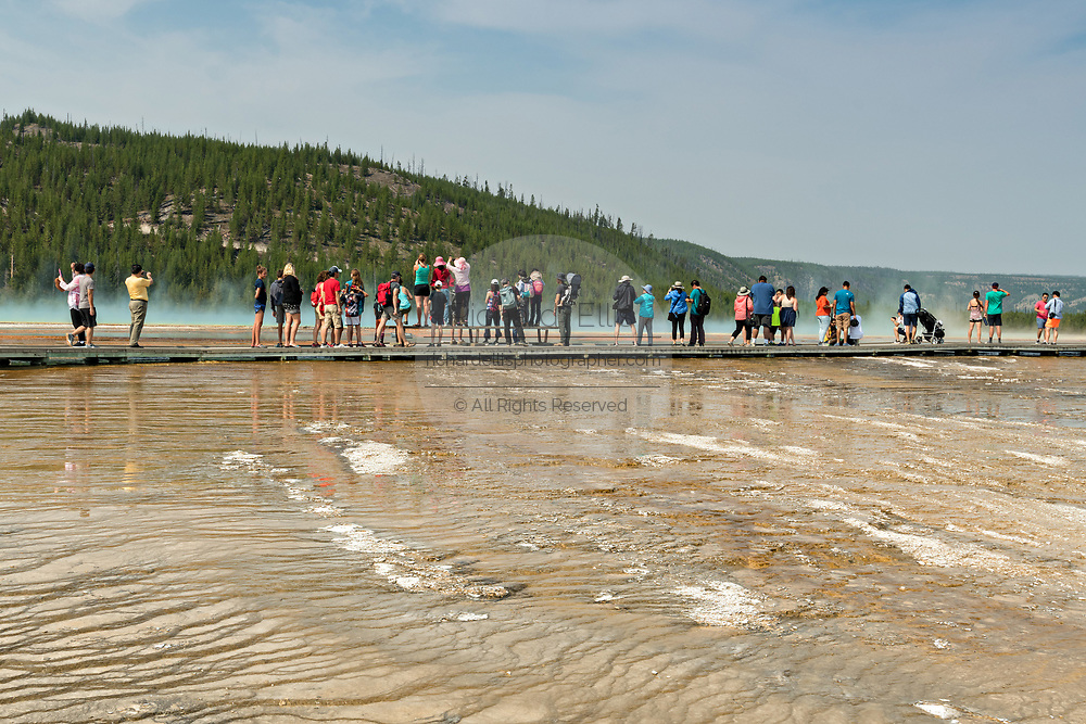 Tourists walk along the boardwalk at Grand Prismatic Spring the largest hot spring in Yellowstone National Park and third largest in the world. Grand Prismatic is about 250 by 300 feet in size, averages 160 degrees Fahrenheit and is up to 160 feet deep. The bright colors around the spring are from cyanobacteria mats. The Grand Prismatic Spring is part of the Midway Geyser Basin Excelsior Group in Yellowstone, Wyoming. The Excelsior Geyser can be seen in the foreground.