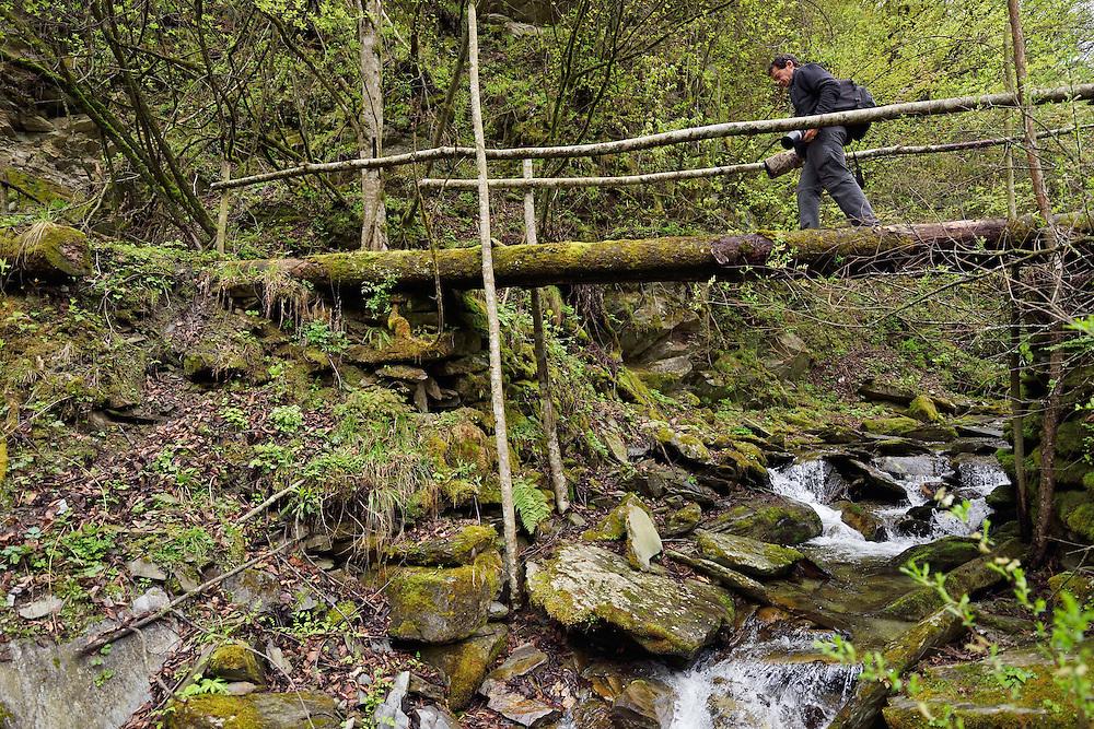 Wildlife photographer Jed Weingarten trekking over a logbridge in Tangjiahe National Nature Reserve, NNR, Qingchuan County, Sichuan province, China