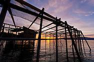 Sea cucumber mariculture cages at Pak Sony's retreat, iris Strait, Kaimana area, Papua