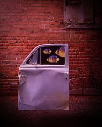Back alley building. CONCEPT STOCK PHOTOS DESIGN STOCK PHOTO
