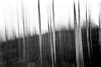 Naked.<br /> Foto: Svein Ove Ekornesvåg